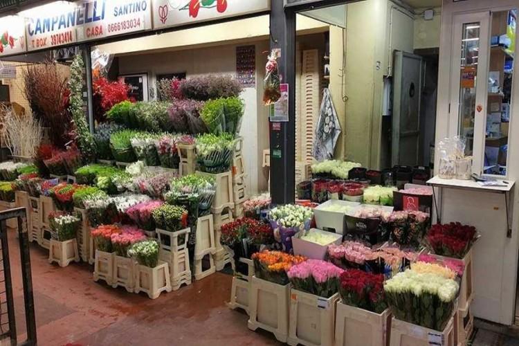 Esposizione Flower