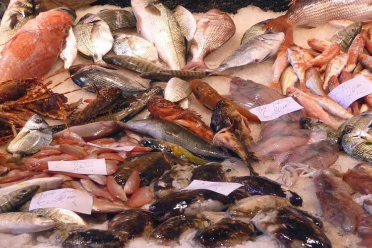 Bancone pesce itticomania3