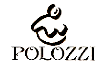 LOGO POLOZZI