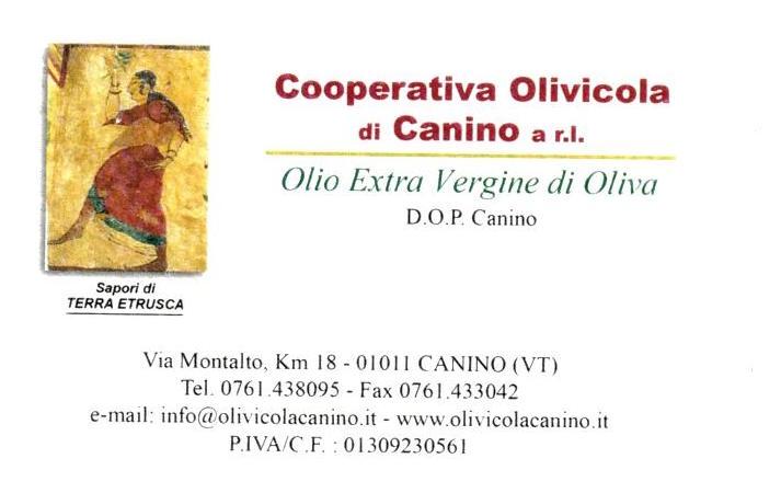 logo cooperativa olivicola di canino srl